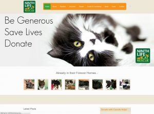 Ninth Life Cat Rescue's website