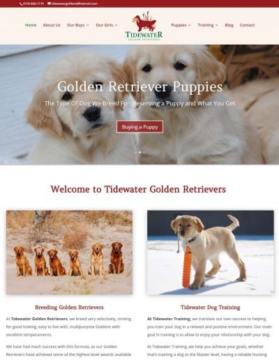 Tidewater Golden Retrievers: Breeding and Training Golden Retrievers